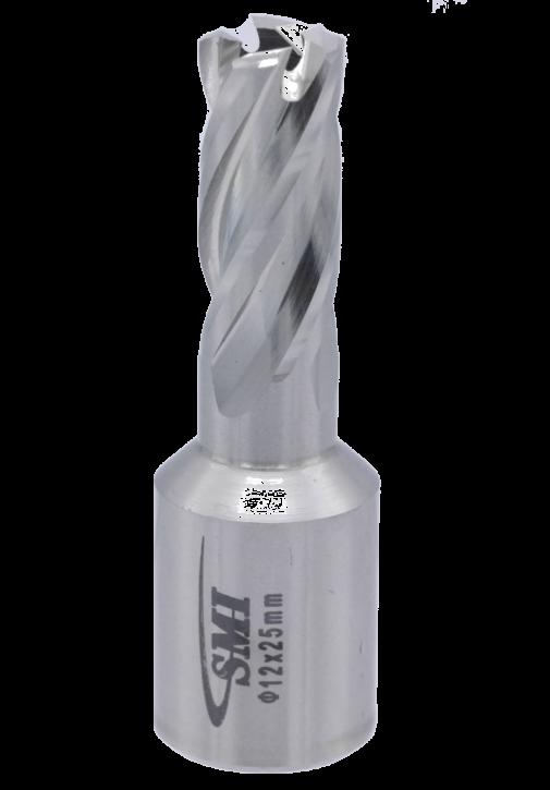 Kernbohrer für Metall Drm. 12 mm Aufnahme Weldon 19 mm